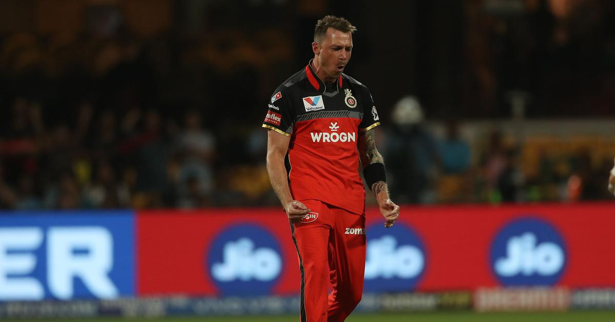 dale steyn in Overseas players in IPL
